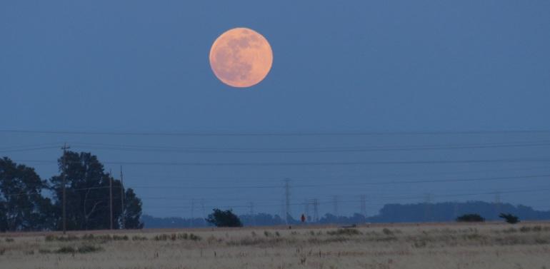 moon & horizon