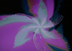 Swirl-ferris